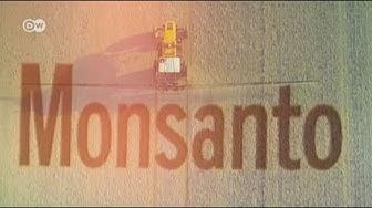 Bayer se enfrenta a 18.400 denuncias por glifosato en EE. UU.