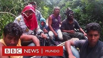 Guardianes del Amazonas: reportaje especial